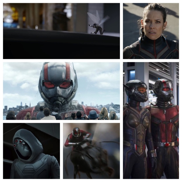 Ant Man and the Wasp pictures
